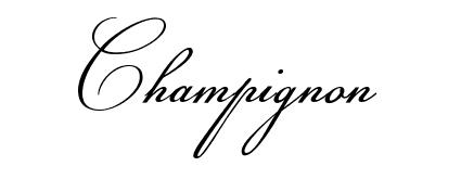 25 Fuentes caligráficas de alta calidad